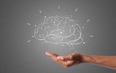 El Neuromarketing Kinestésico