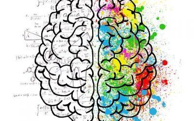 ¿Qué es el Neuromarketing? Tipos y Ejemplos